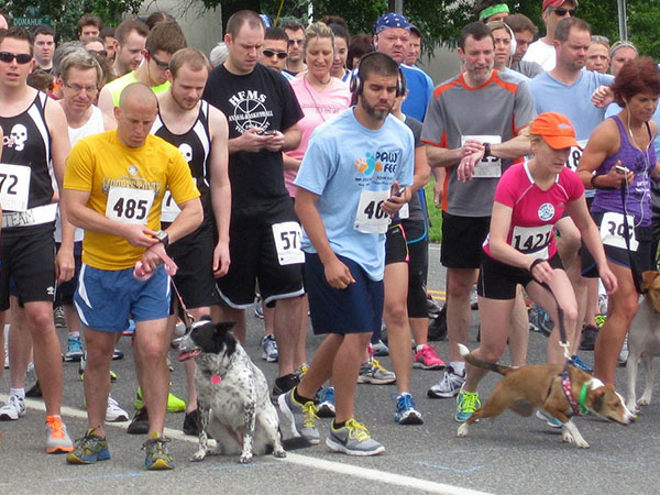 Racers and their dogs participate in a 5k starting at Cooper River Park Stadium to raise money for the Animal Welfare Association. (Photo via Animal Welfare Association)