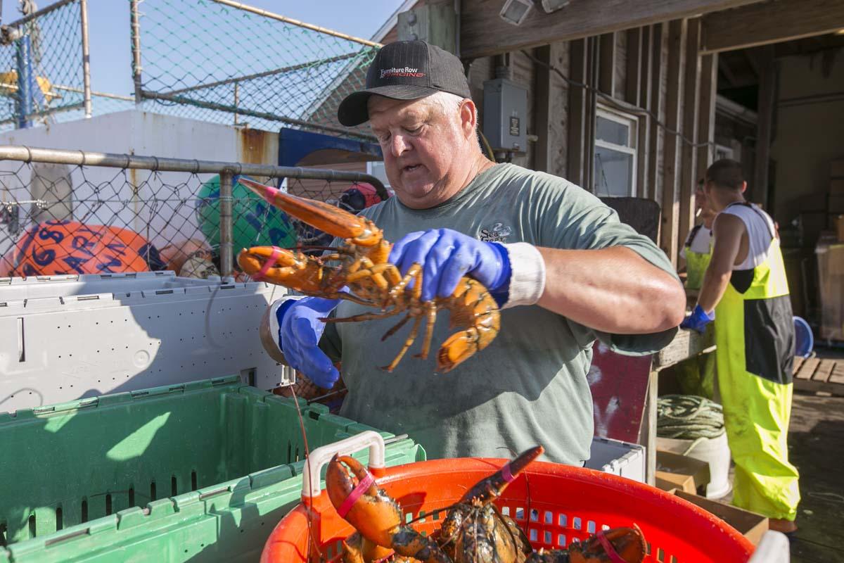 Lobster House Freehold Nj – House Plan 2017