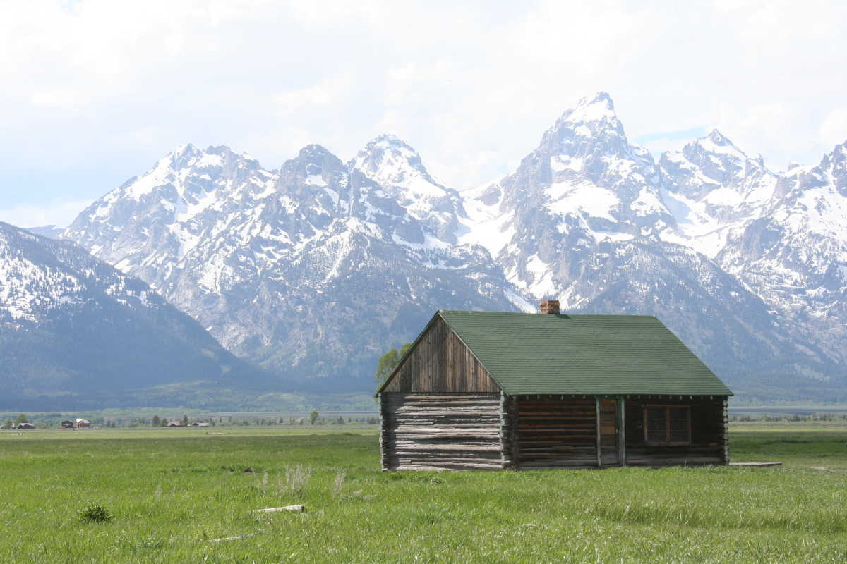 Tauck's guides are well-versed in tour directing, including where the best photo ops are along the bus routes, including Mormon Row in Grand Teton National Park.