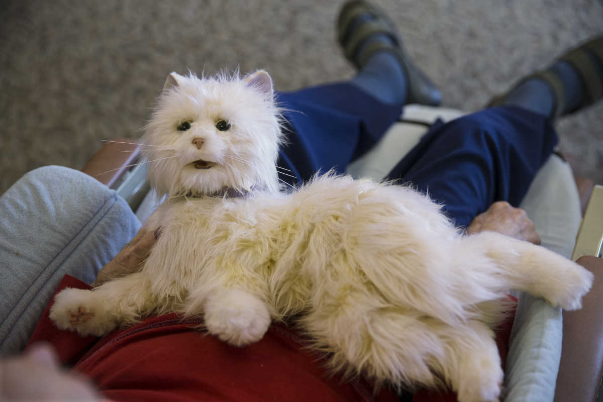 """Pearl"", one of the robot cats used at the Abramson Center for Jewish Life, lays across the lap of Ina Schecter, 91, a resident of the center, waiting to be petted."