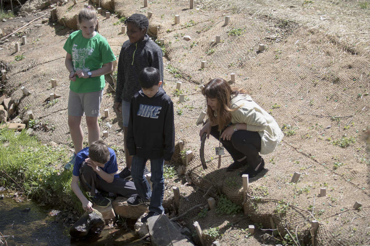 Teacher Jennifer Tanay (right) and the McKinley Elementary 5th graders in her Roots and Shoots environmental club (from left: Iris Winegrad, Dylan Britt, Steven Thai and Patrick Delaney (kneeling), explore the school's section of Jenkintown Creek, which they helped rebuild and revitalize.