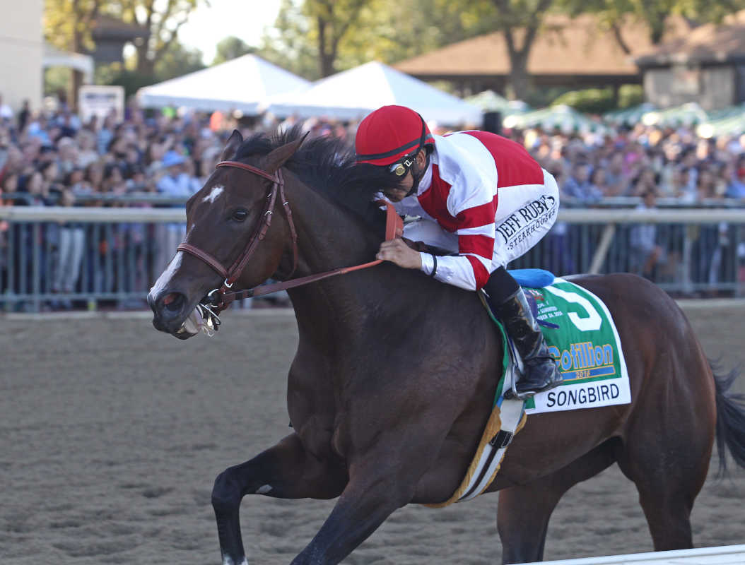 Songbird, Mike Smith aboard, wins Cotillion Stakes at Parx on Saturday.<br />