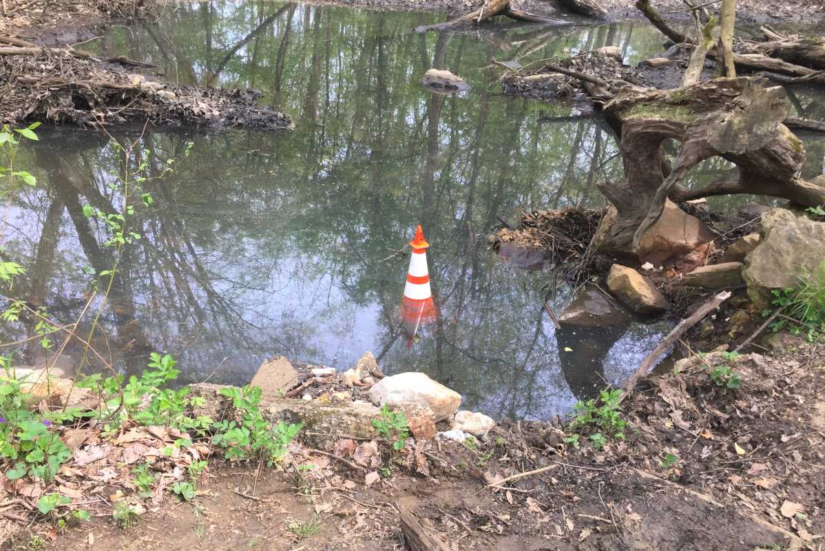 "A cone marks the spot in Haddon Township woods near the Cooper River where the body of Brendan Creato, 3, was found in October 2015. His father, David ""D.J."" Creato, is on trial on charges of murdering the boy."