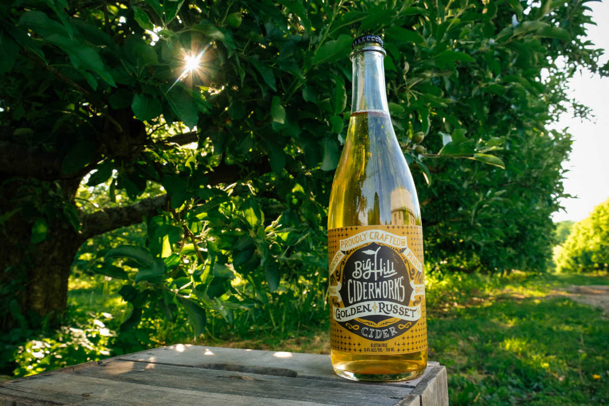 Golden Russet cider from Big Hill Ciderworks. Photograph by Miranda Harple