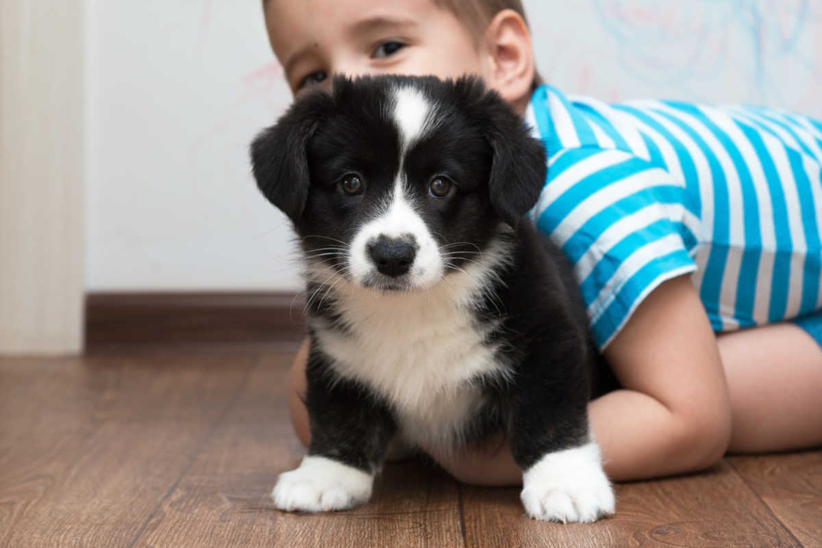 Not all kids love dogs, but there are ways to help children overcome fear.