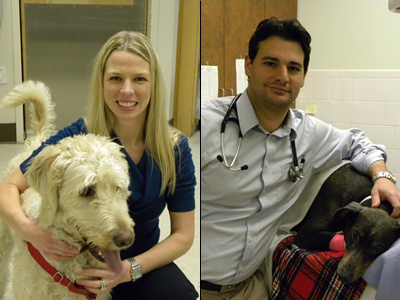 Veterinary Dermatologist Dr. Noel Radwanski and Veterinarian Dr. Marc Roblejo take questions on the health of your pet.