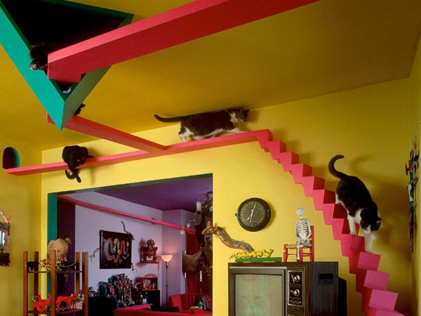 The home of a former cat hoarder can smell like The Cats´ House (Photo: Bob Walker/thecatshouse.com)