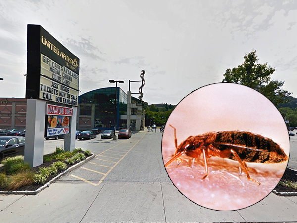 A woman was bitten by bed bugs at the United Artists Main Street movie theater in Manayunk, a lawsuit claims. (Google Maps; insert: CDC)