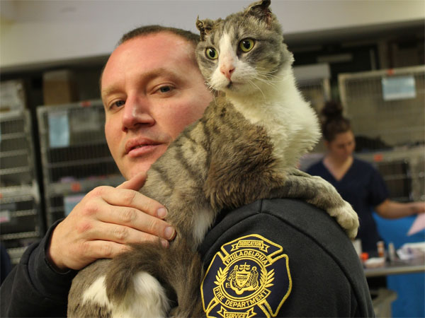 Campbell the cat with his new owner, Stephen Paslawski. (Photo courtesy of PSPCA)