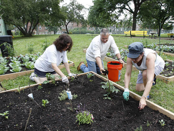 Paulette Rodriguez, left, Michael Hoy, center, and Pam Baranackie, right, who are part of the Take Back Your Neighborhood community group, work in the community garden at the Max Myers playground in Northeast Philadelphia on June 9, 2013. ( DAVID MAIALETTI / Staff Photographer )
