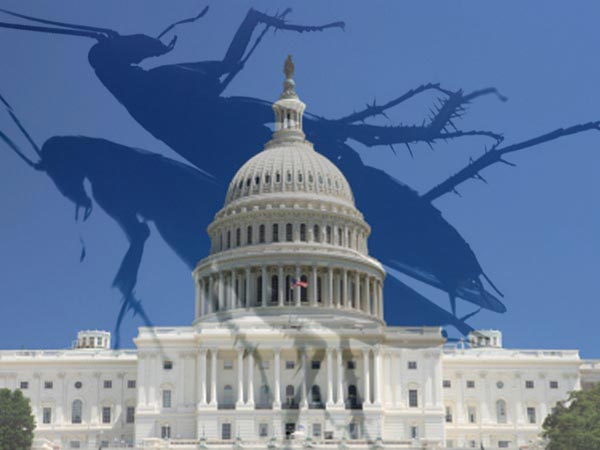 Public Policy Polling found Congress to be less popular than bugs in a recent poll, bugs 45 percent, Congress 43 percent.