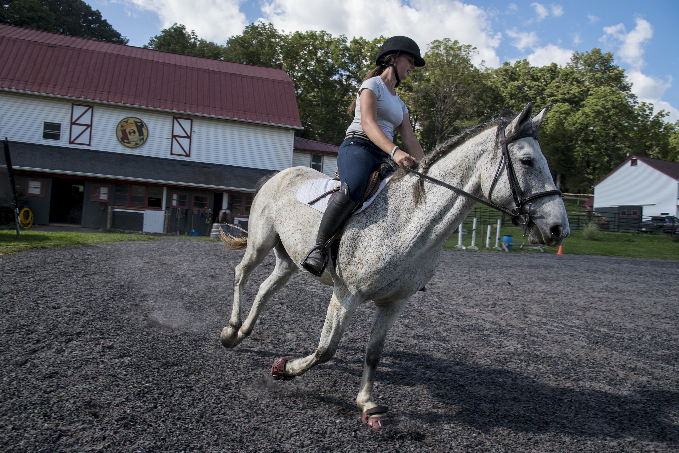 Neva McGowan, 17, rides Moon, 8, a formerly-wild, endangered Nokota horse, around the ring of her parents 13-acre Nokota Horse Preserve in Birchrunville, Chester County,, PA, Neva's mom, Christine, is dedicated to saving Nakotas, which trace their ancestry back to Lakota Chief Sitting Bull.