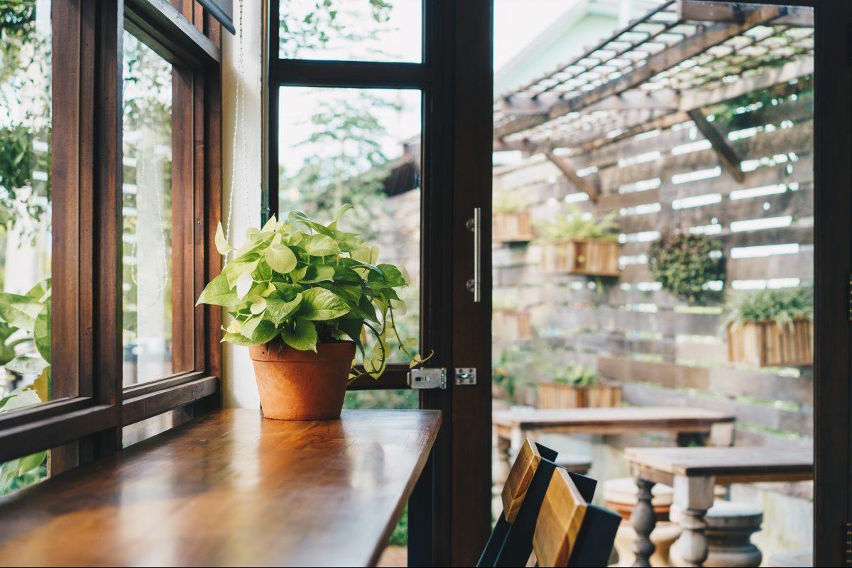 Bring houseplants inside before you turn on the heat.