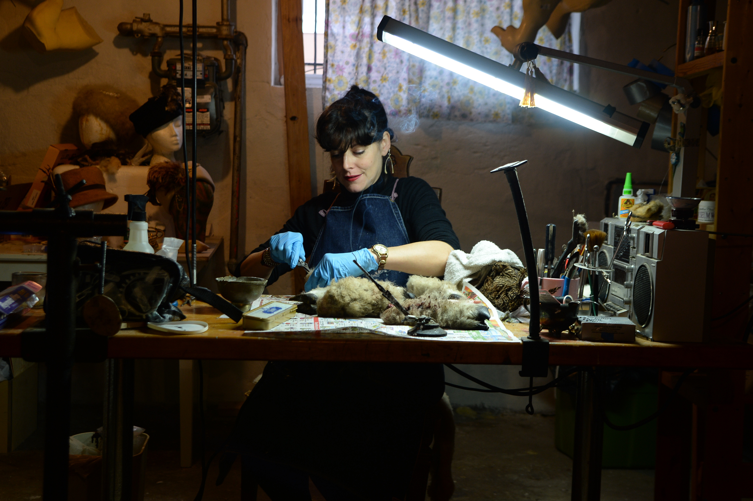 Beth Beverly, a taxidermist from South Philly, works on separating sheep skin from bone in her studio. Beverly had her work with five squirrels featured in the new season of Netflix´s Stranger Things. GENEVA HEFFERNAN / Staff Photographer
