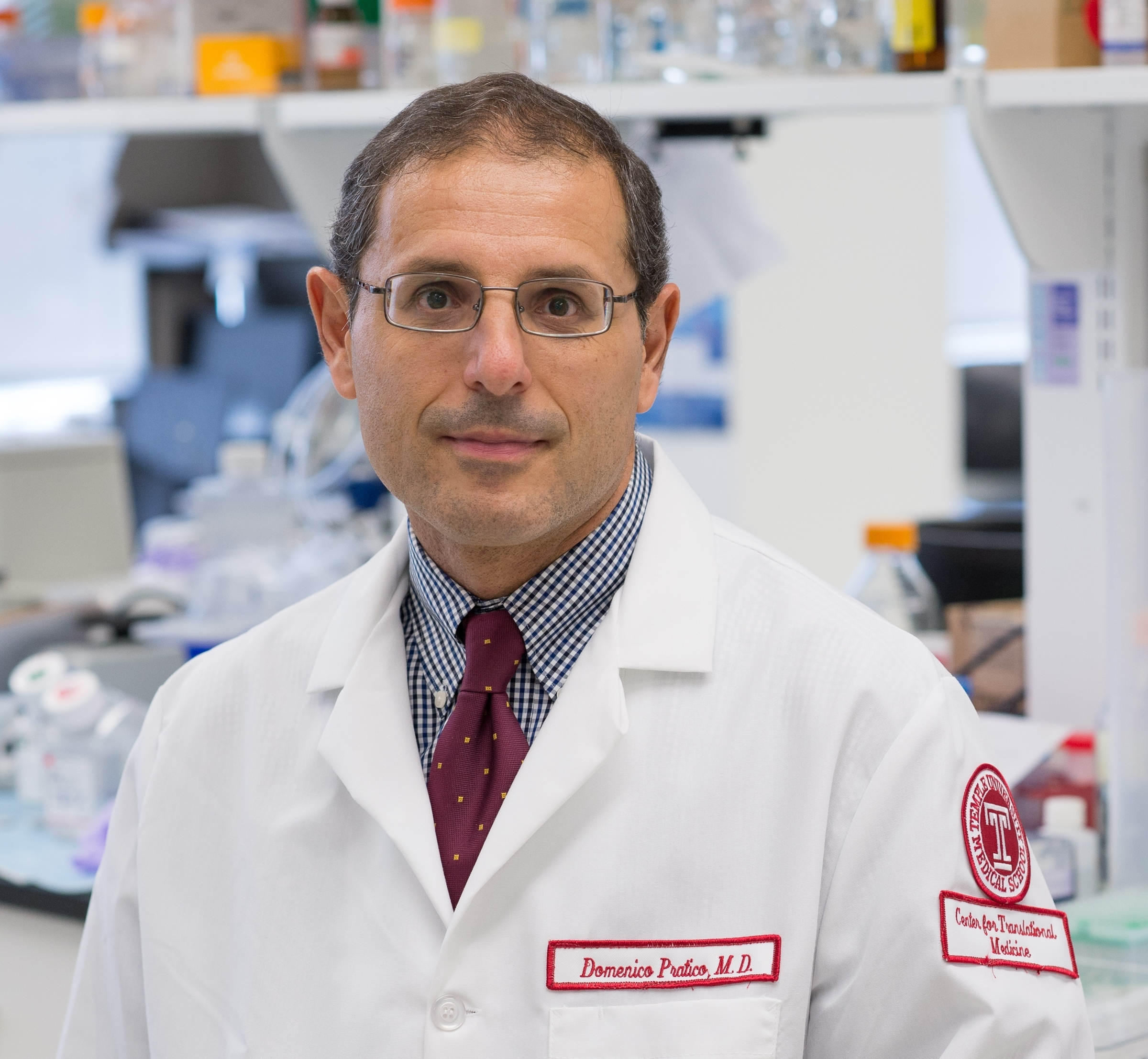 Domenico Pratico is a professor in the departments of pharmacology and microbiology and the Center for Translational Medicine at Lewis Katz School of Medicine at Temple University.