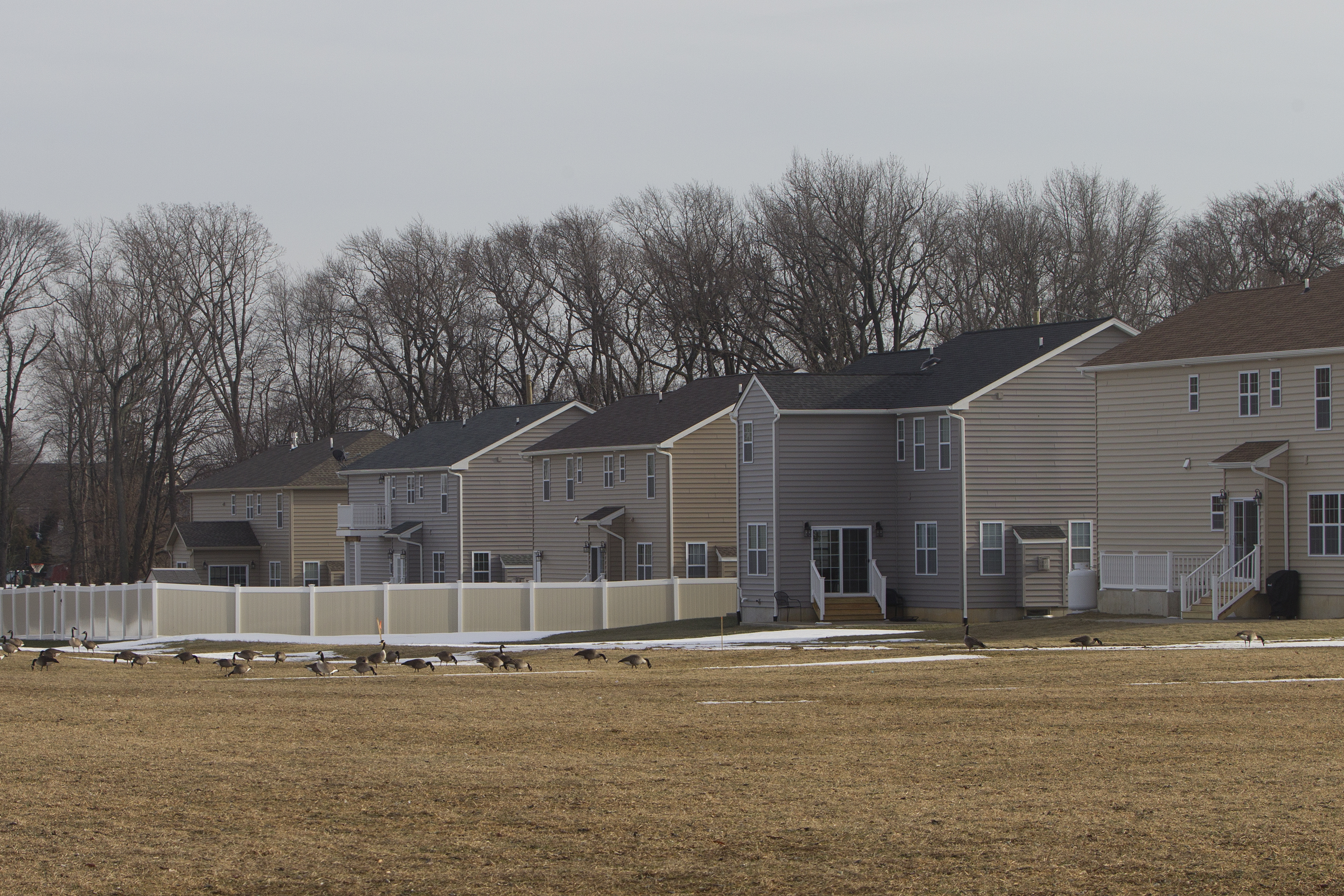 Homes are shown along Hulmeville Road in Bensalem, a community of diverse incomes, housing and people.