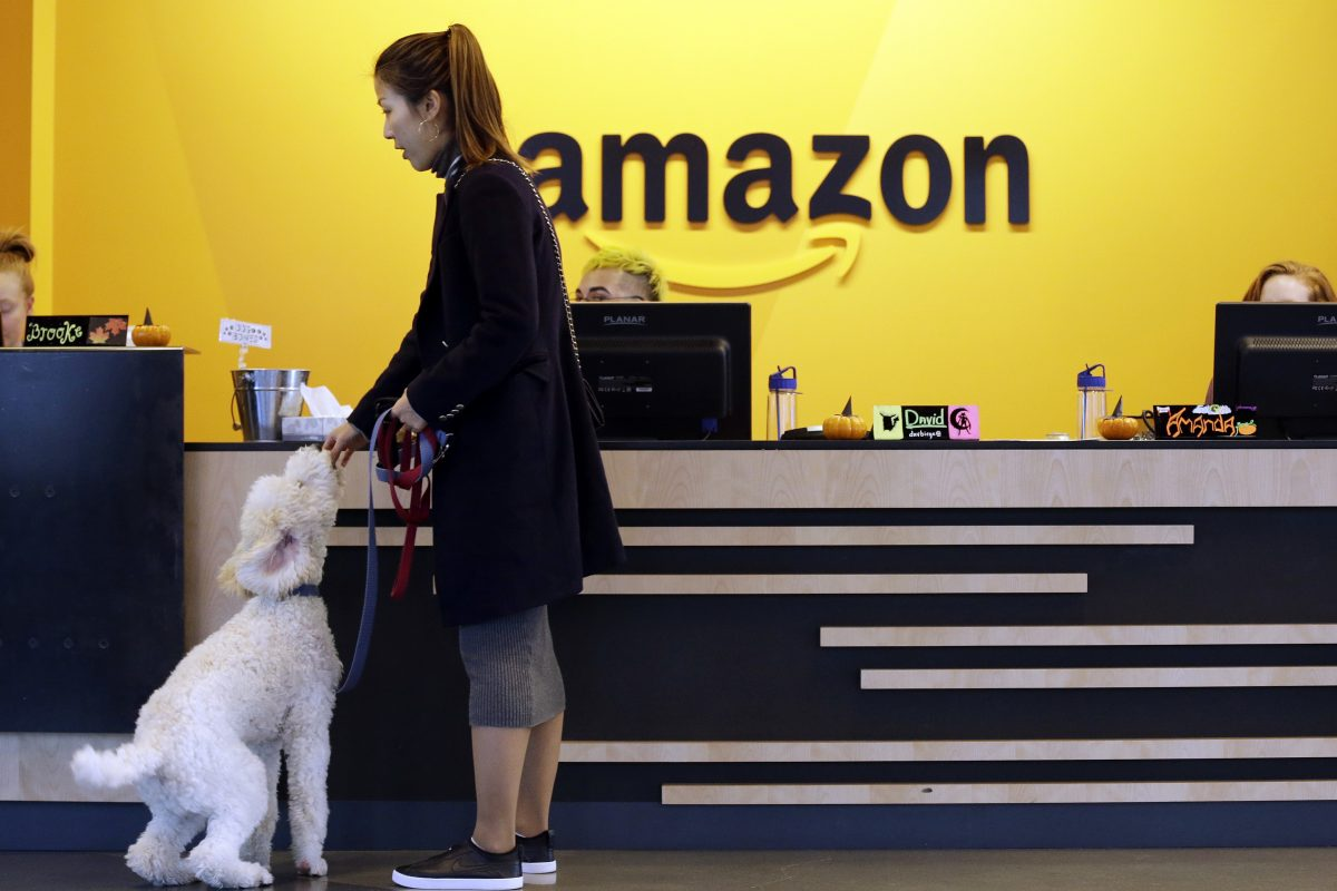 In this Wednesday, Oct. 11, 2017, file photo, an Amazon employee gives her dog a biscuit as the pair head into a company building, where dogs are welcome, in Seattle.