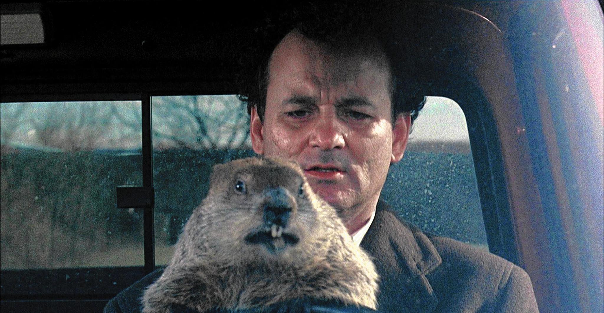 "Bill Murray in ""Groudhog Day"""