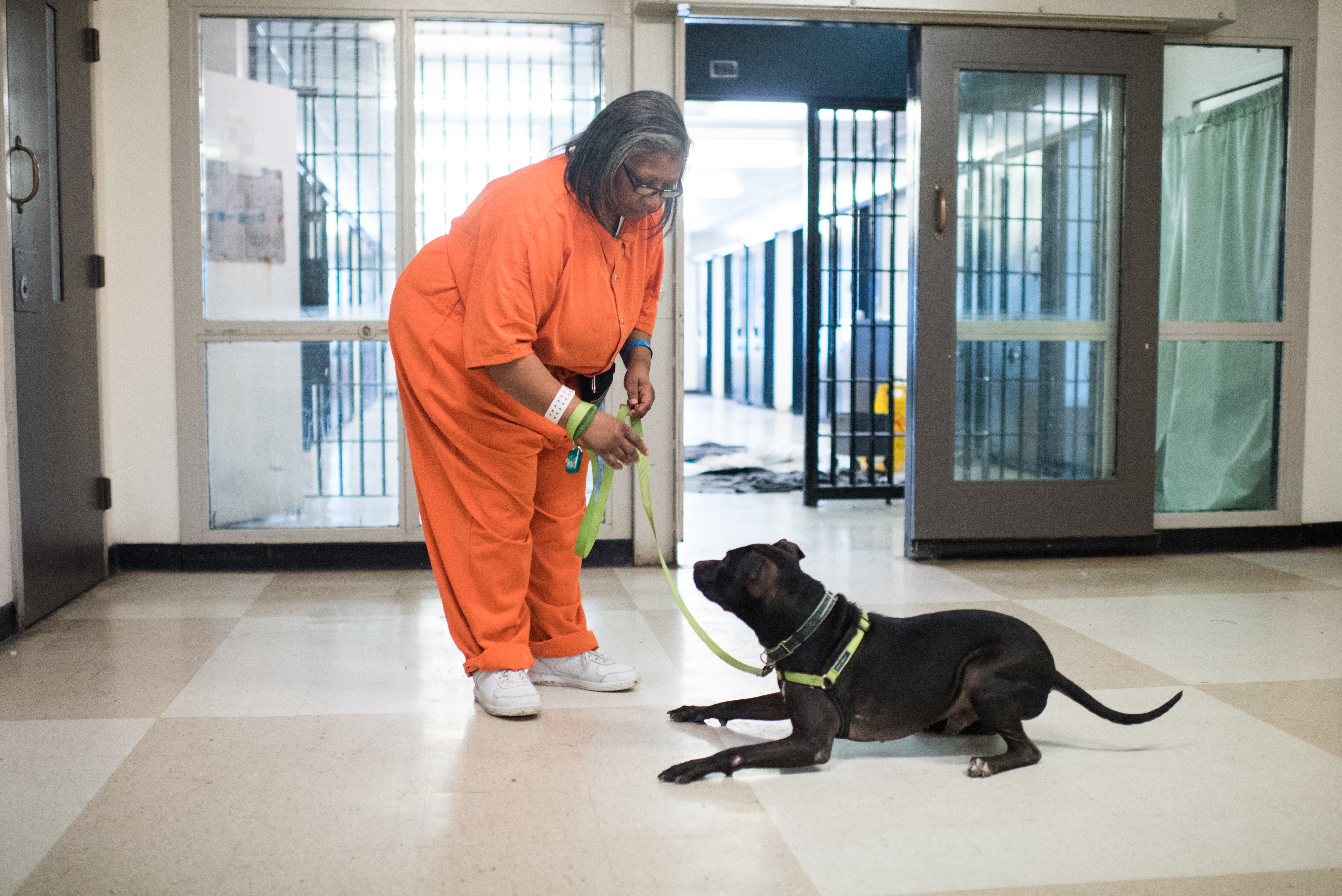 Susan and Denali train with New Leash on Life, a non-profit that teaches inmates dog-training and grooming skills so they can find work once they leave prison. (Credit: Jon Tan, Dreamlite Photography).