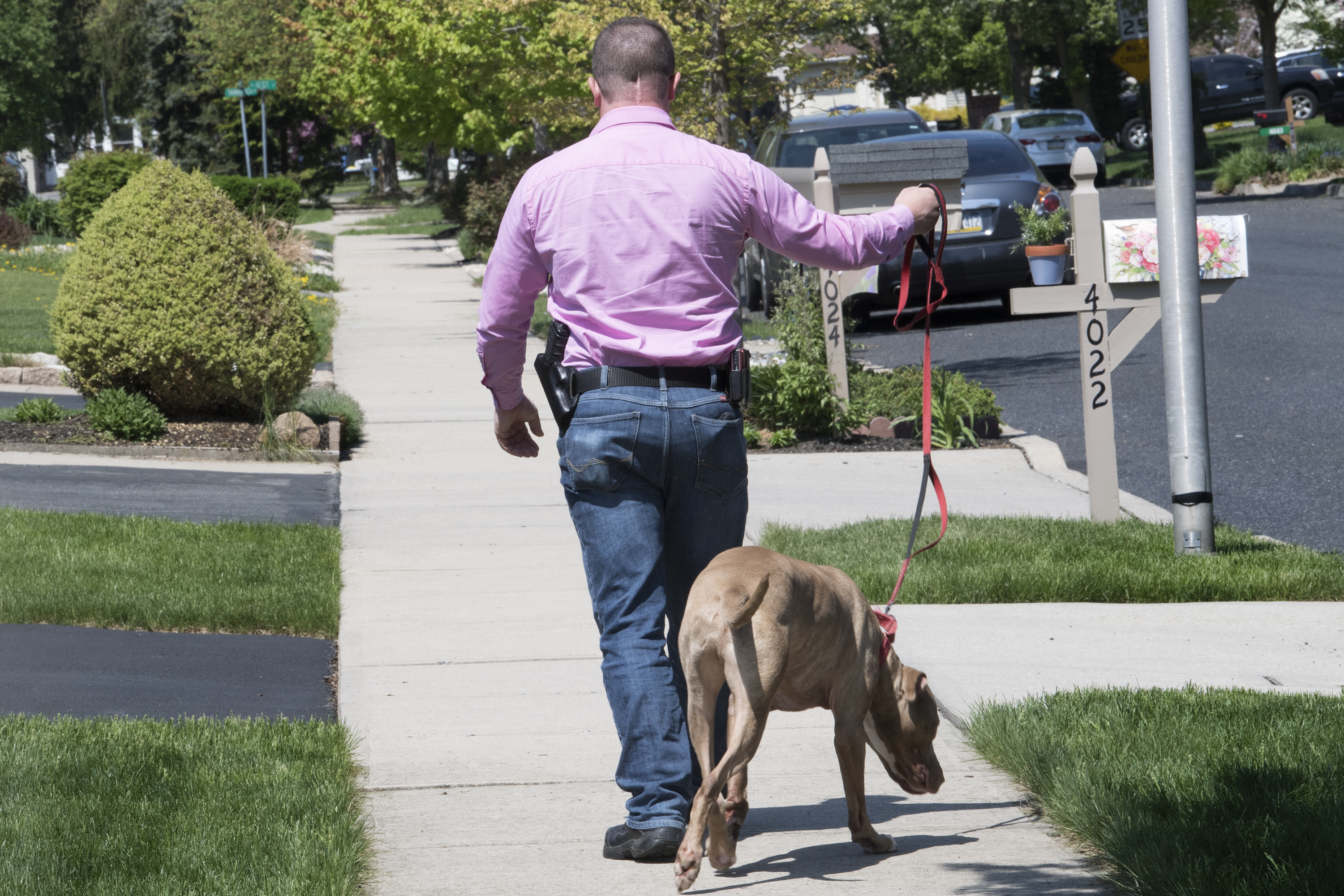 """Mark Fiorino is photographed with an open-carry handgun during a walk with his dog """" Barrett """" in Allentown, Pa. Wednesday, May 9, 2018."""