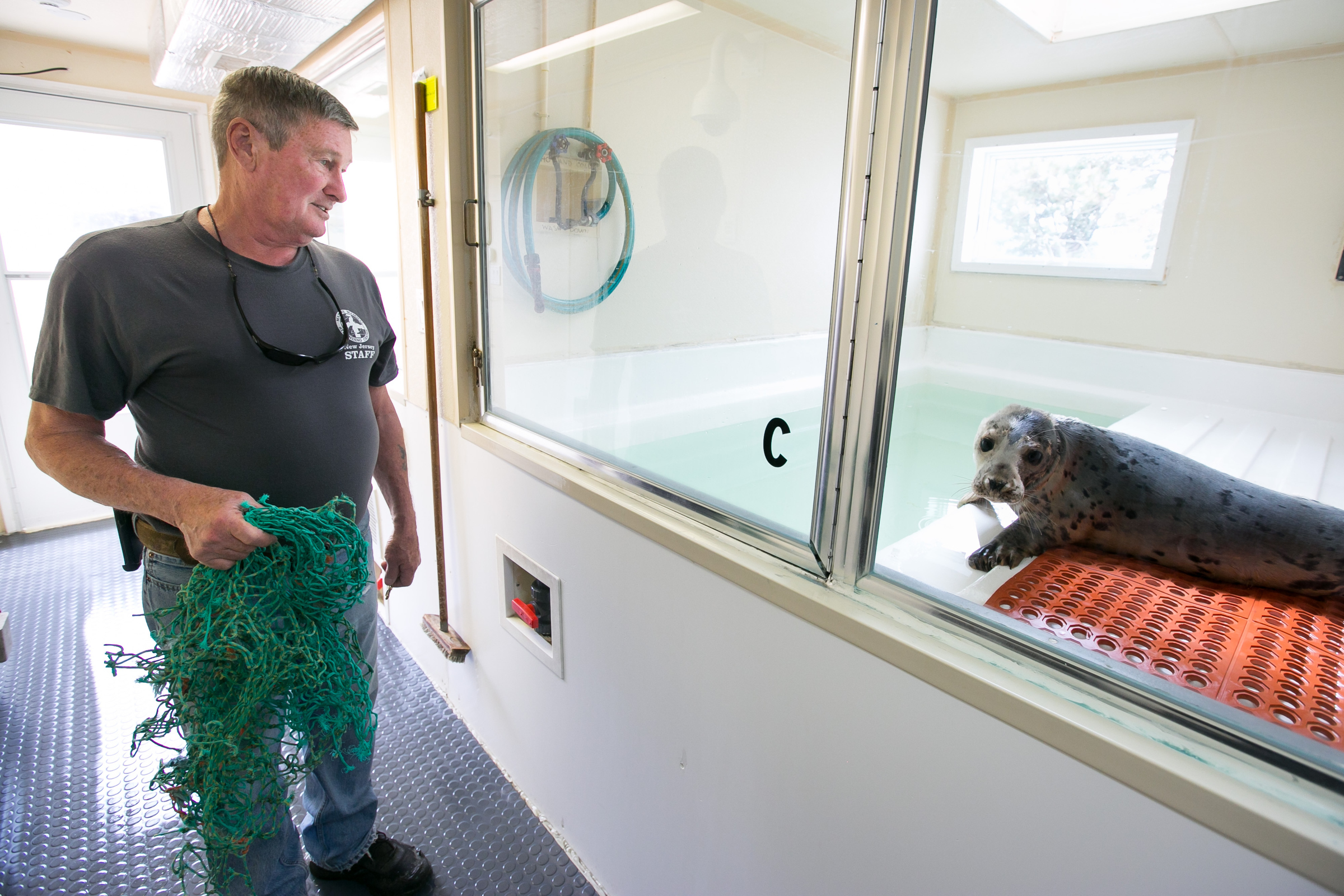 Bob Schoelkopf, founder of Marine Mammal Stranding Center, visits a sick seal, who is now recovering at the facility, in Brigantine, New Jersey, Wednesday, May 23, 2018. This seal was not damaged by plastics. JESSICA GRIFFIN / Staff Photographer