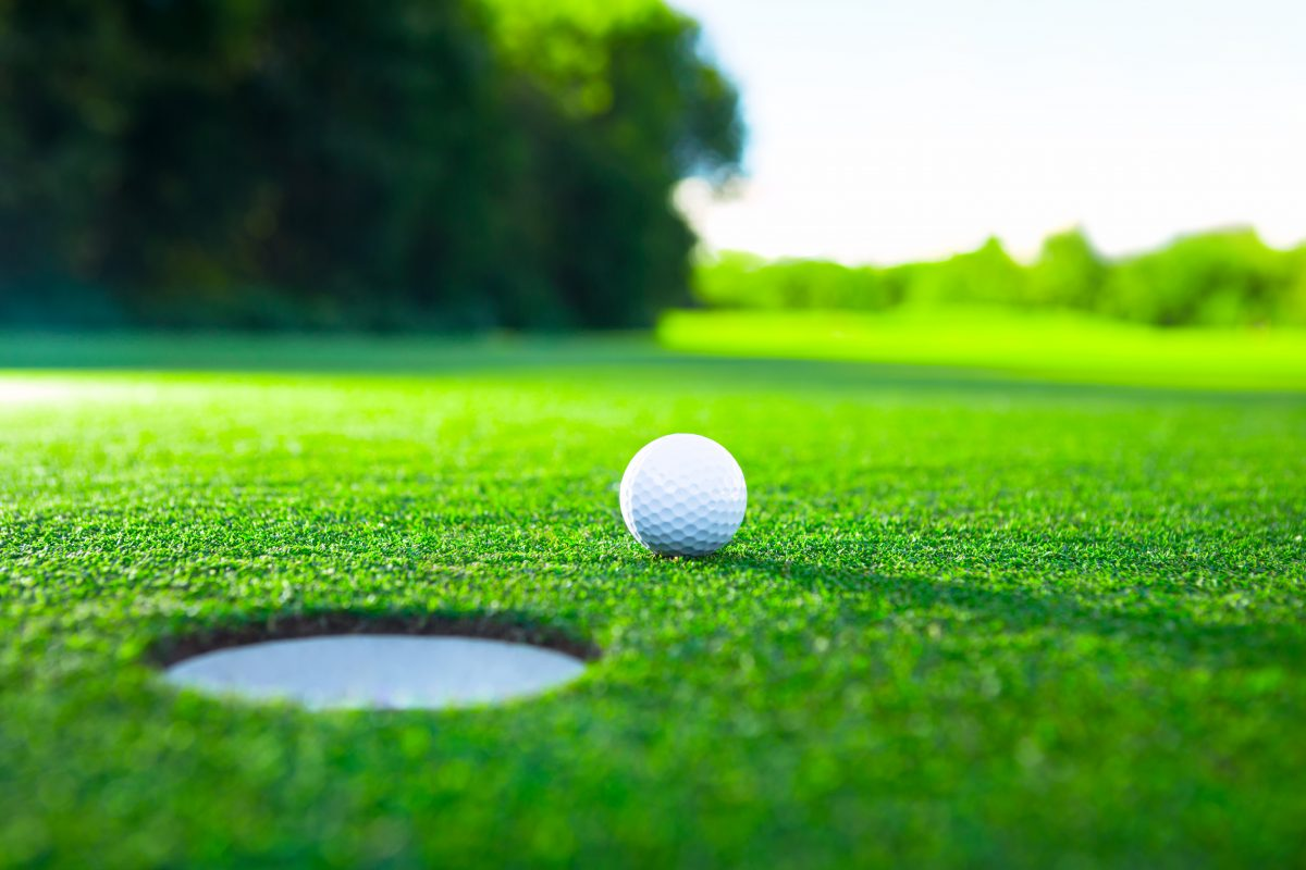Golf ball on the green. Stock photo