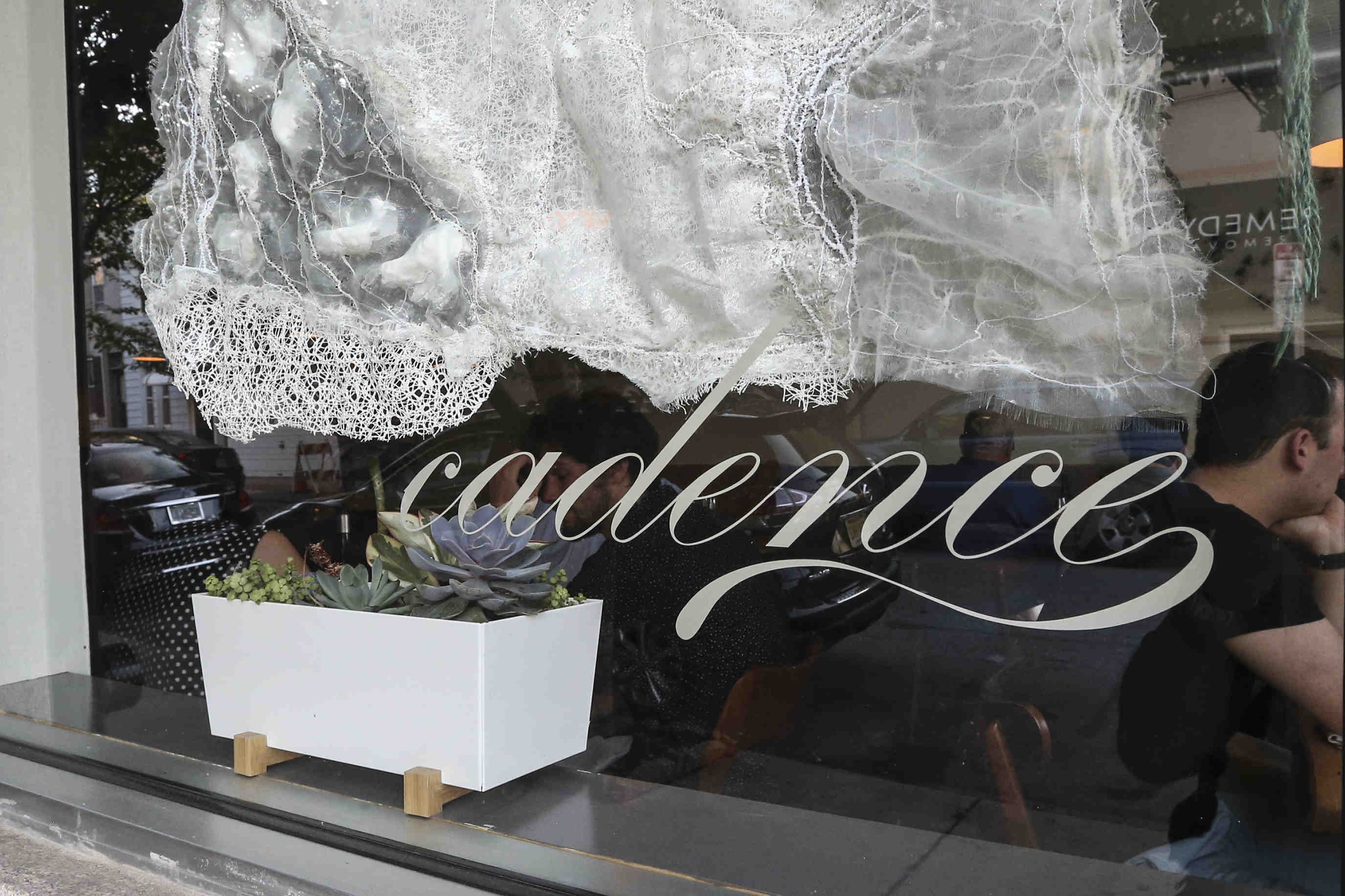 Cadence is a progressive new BYOB in the South Kensington space formerly occupied by Modo Mio.