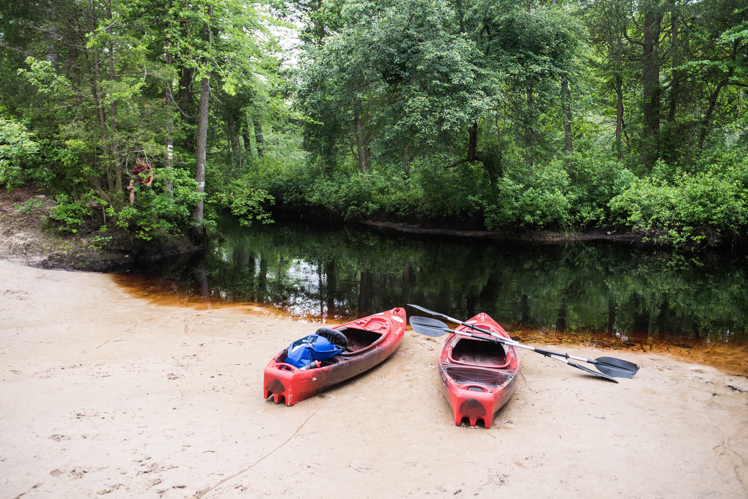 In the Pine Barrens, where a variety of calm waterways for canoeing and kayaking exist, the water takes on a rich red hue from tannins and acids leached from cedar trees, coupled with a naturally high iron content of surrounding soils.