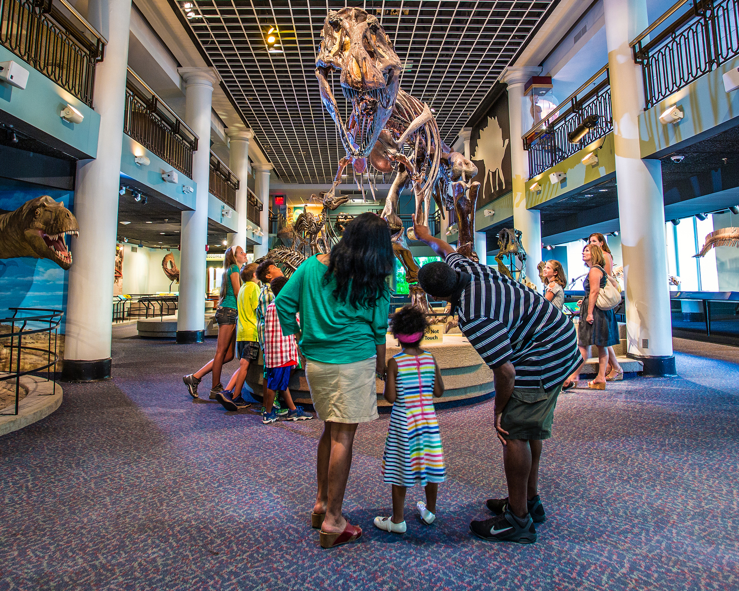 The Academy of Natural Sciences offers free admission for dads who want to dive into exhibitions full of dinosaurs, live butterflies, and more with their kids this Father´s Day.