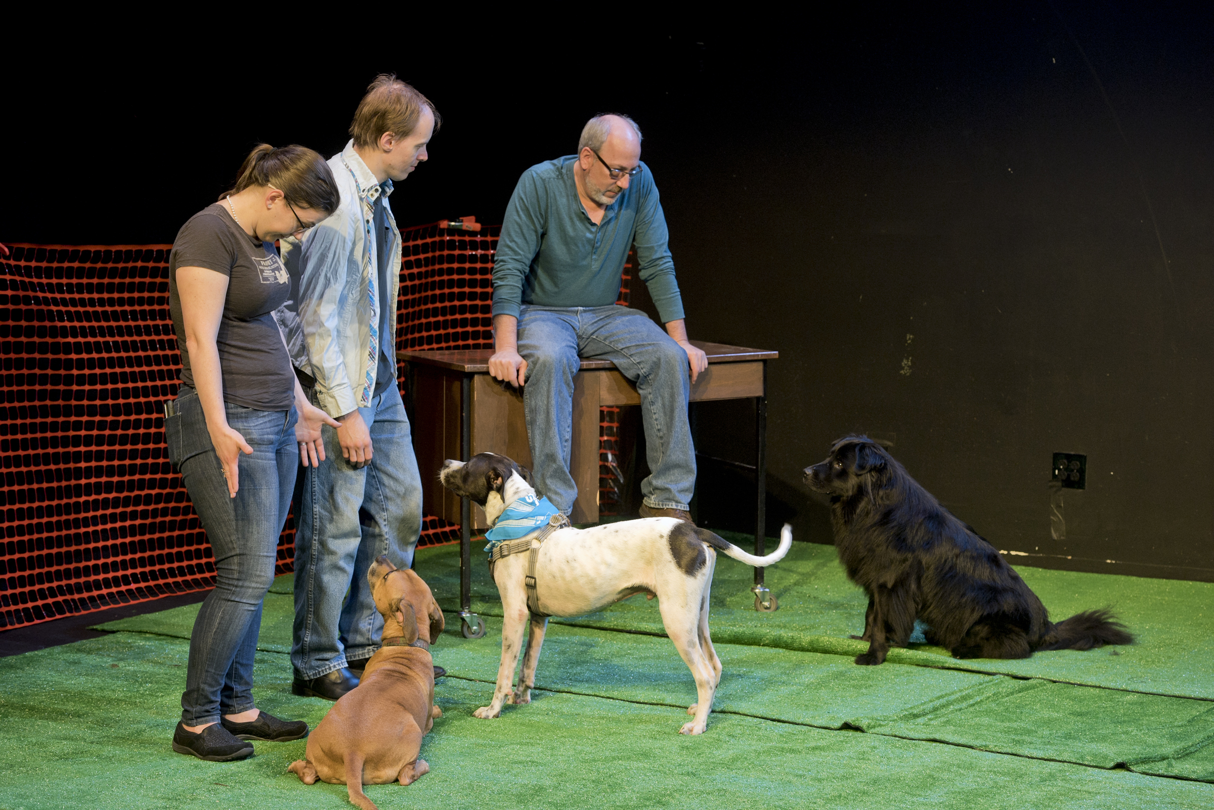 "(L to R) InterAct Theatre Company´s Production Manager Lauren Tracy, her husband Andrew Cowles, and Producing Artistic Director Seth Rozin with their dogs (L to R) Molly, Hamilton, and Chucho, enjoy a brief quiet moment on the stage of the Proscenium Theatre as part of the company´s event ""Dramatic Paws: A Day of Dogs Onstage,"" where they invite their fans and friends, and their canine pals to have the run of the Center City Philadelphia venue on Saturday, June 23, 2018."
