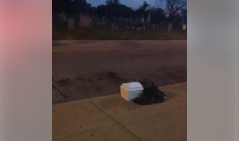Child's casket, human organs found on North Philly sidewalk