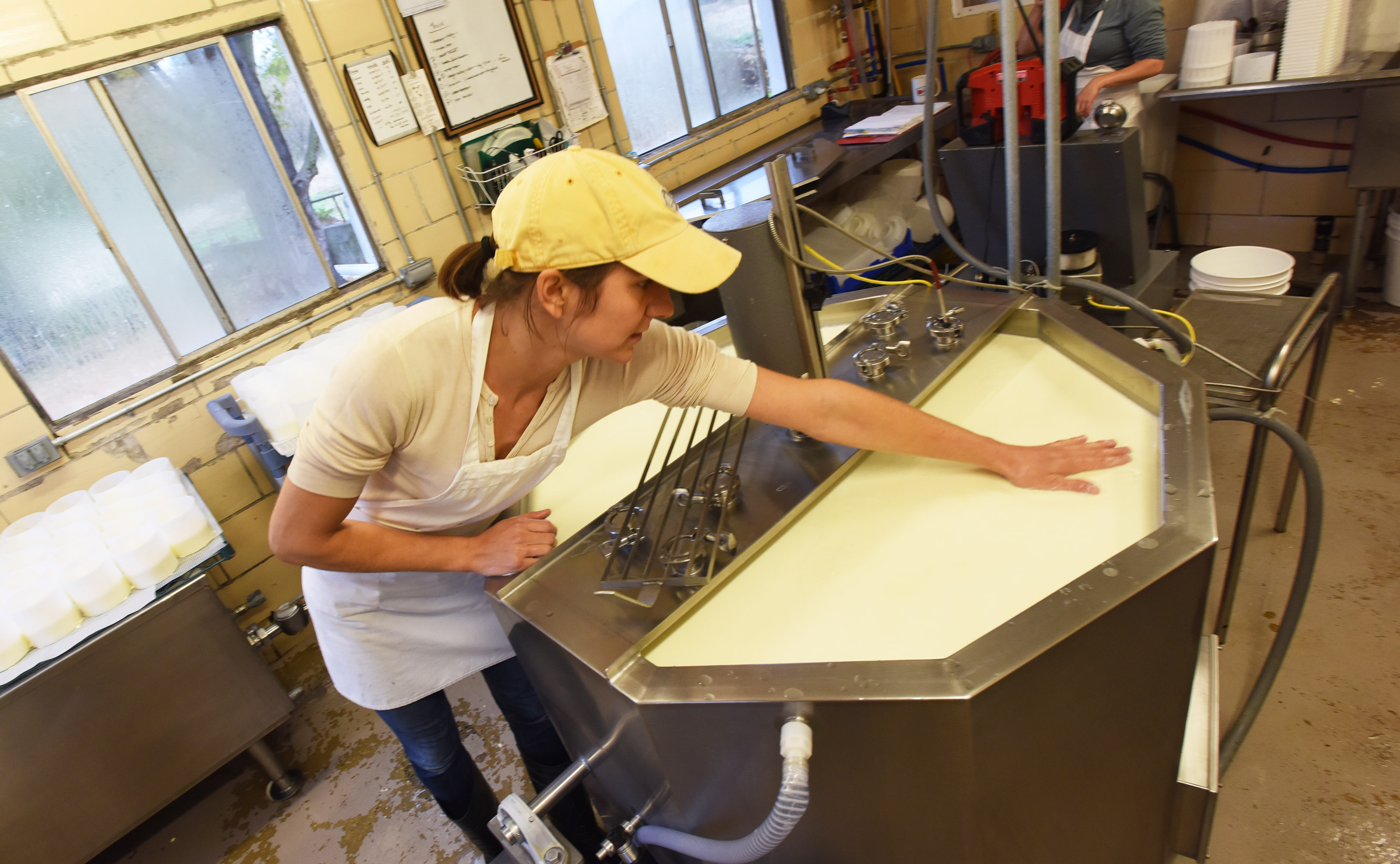 Cheese maker Stefanie Angstadt is shown working at her Oley cheese shop in Oley, Pa.