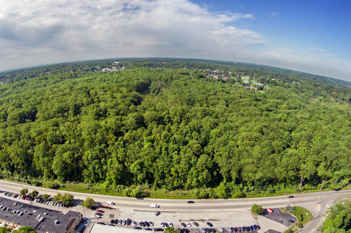 An aerial view of the 213 acres owned by the Archdiocese of Philadelphia. Carlino Commercial Development, working under the name Sproul Road Developers LLC, hopes to develop nearly 53 acres and leave the rest as open space.