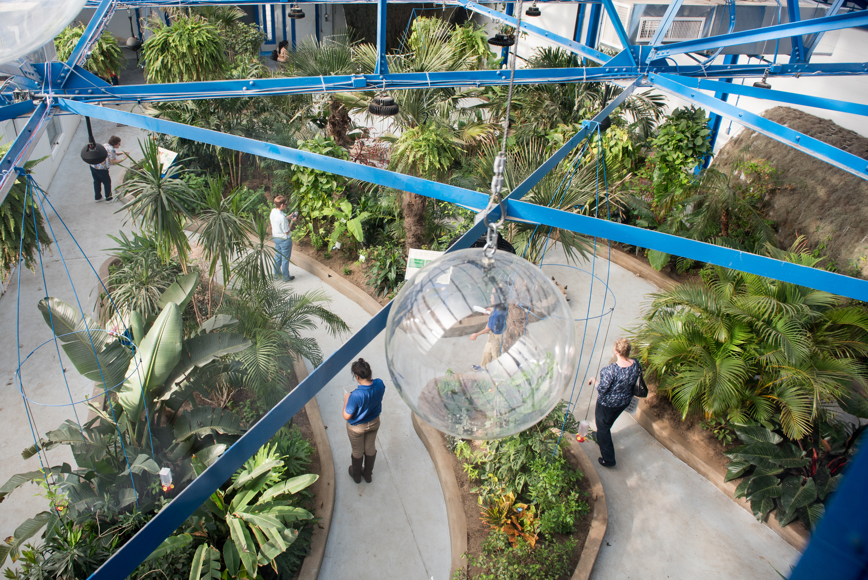 Guests explore the Butterfly Pavilion during the grand opening at The Insectarium in Northeast Philadelphia in 2017.