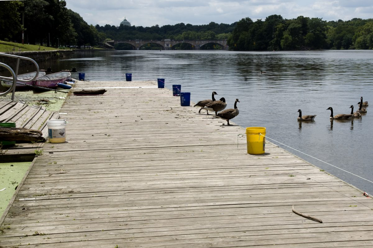 The public dock on the Schuylkill River where a toddler fell into the water on Saturday.
