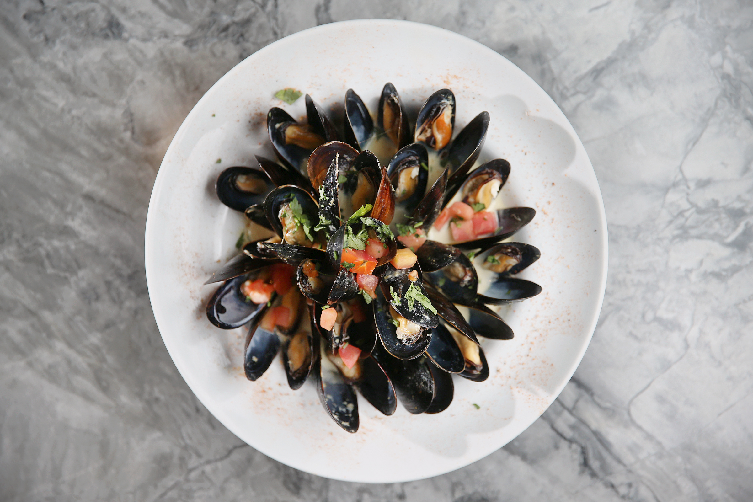 The green curry mussels are pictured at Seafood Unlimited near Philadelphia�s Rittenhouse Square on