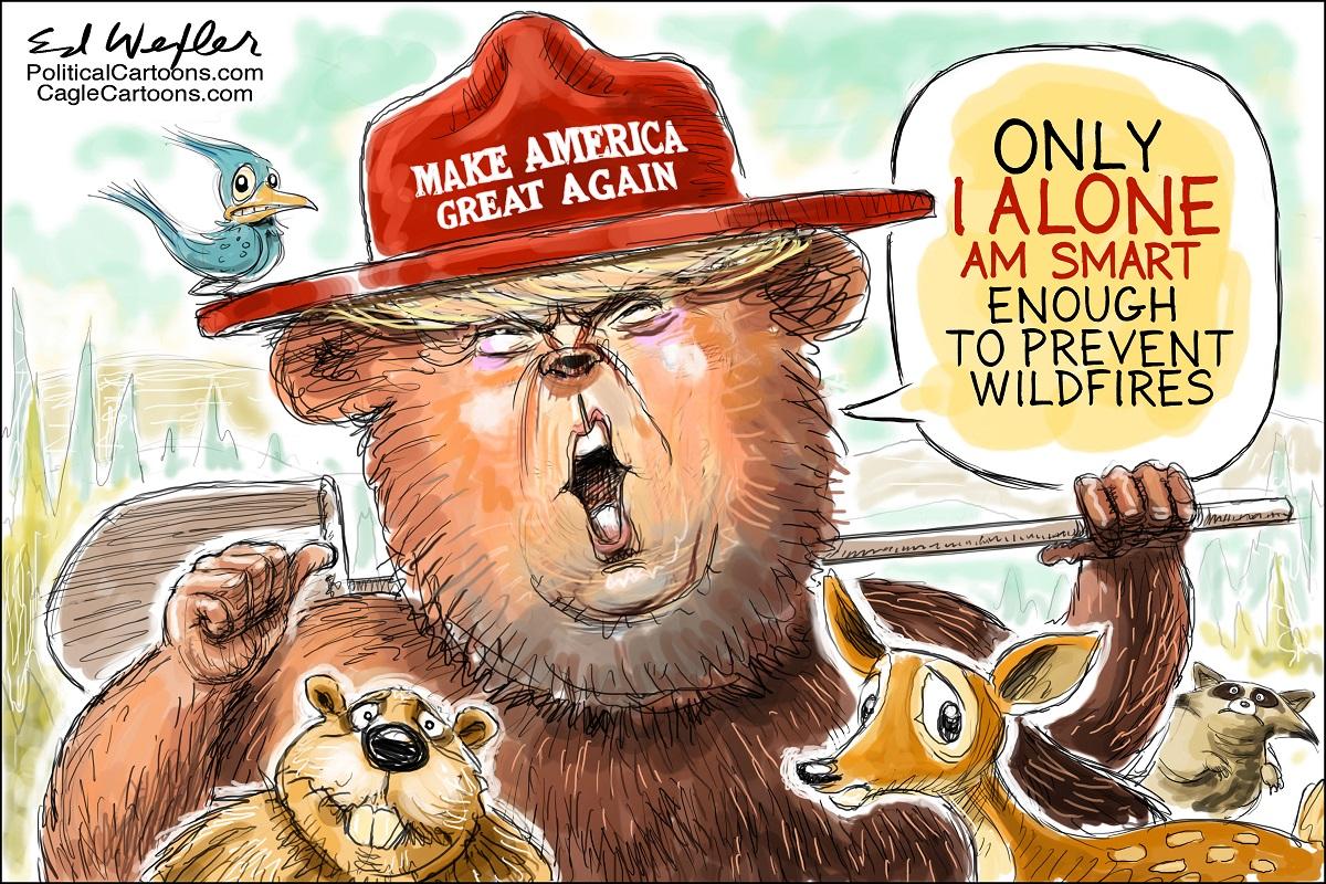 Trump Smokey Bear