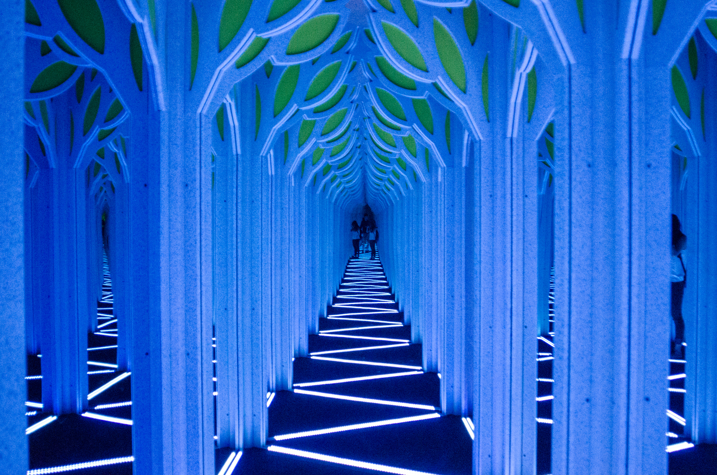 The Franklin Institutes New Exhibition A Mirror Maze Numbers In Nature Will Focus On Patterns It Feature Funhouselike