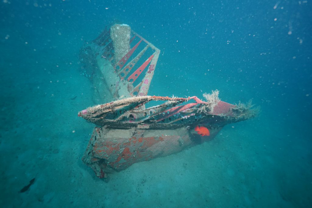A University of Delaware scientist and colleagues found this debris from a downed World War II aircraft, a B-25 bomber that had been missing for more than 70 years, in the waters off of Papua New Guinea.