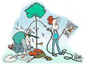 "Signe WIlkinson´s comic strip Family Tree features a family trying to go ""green"" in various ways."