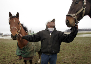 Melvin Dutton is legendary in Chester County horse circles for his ability to train and break horses and instruct riders. Here he whispers to one of the horses on the farm where he works.
