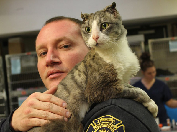 Fire Dept. Lt. Stephen Paslawski is adopting Campbell the cat. Photo: PSPCA.