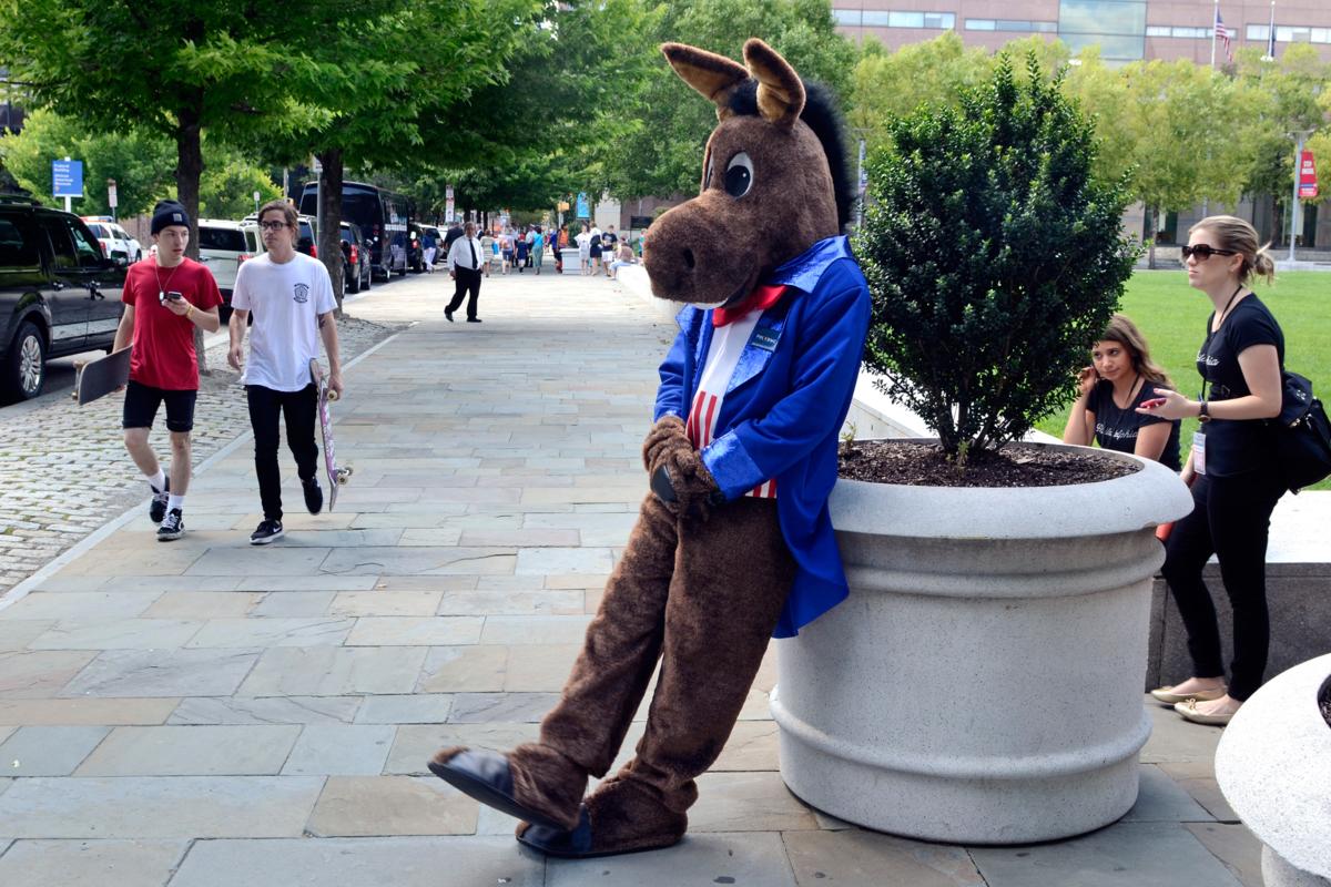 DNC donkey costume