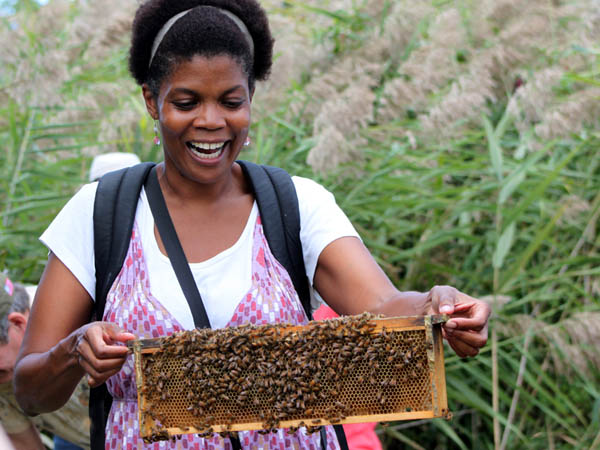 Find what all the buzz is about at Bartram´s Garden this weekend (photo by Sarah Plonski)