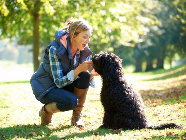 Consider letting someone else pick your dog. (iStock)