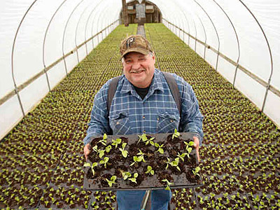 Kevin Flaim in a greenhouse full of eggplant seedlings on the family farm in Vineland, N.J. They will be planted in the farm´s fields at the end of April.(Michael Bryant / Staff)