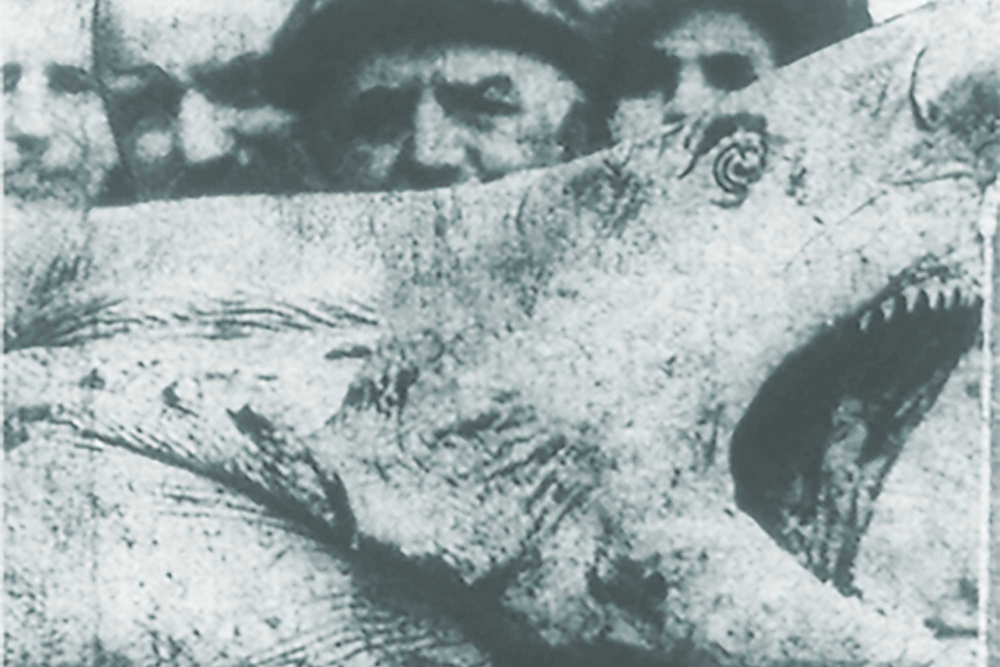 July Marks The 100th Anniversary Of Jersey Shore Attacks That Inspired A Worldwide Fear Sharks