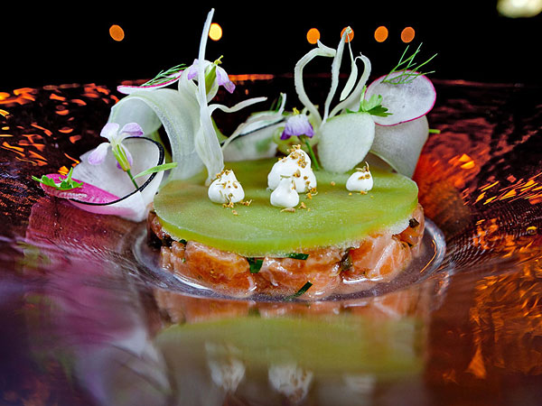 Arctic char tartare was gorgeous, but overwhelmed by a frozen disc of tart apple-fennel juice. (David M Warren/Staff Photographer)