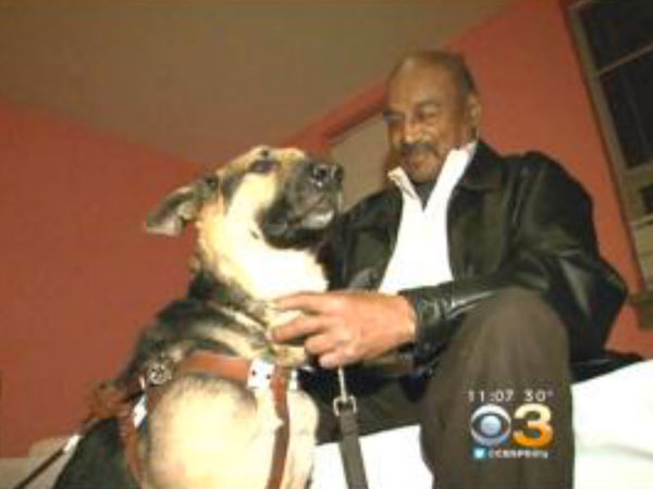 Luther Johnson, 74, and his two-year-old guide dog, Yates. (Photo via CBS Philly)