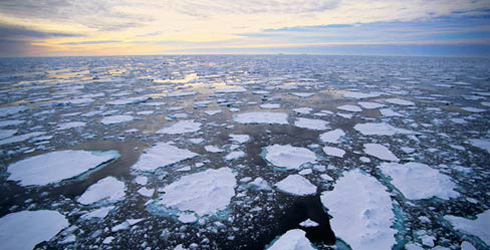 Melting ice floats away from polar icecap. (Credit: The Nature Conservancy)